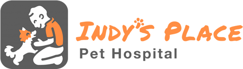 Indy's Place Pet Hospital
